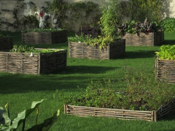 vegetable-garden-1006281