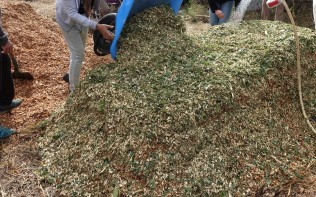 T&H_agroécologie_20170919_075