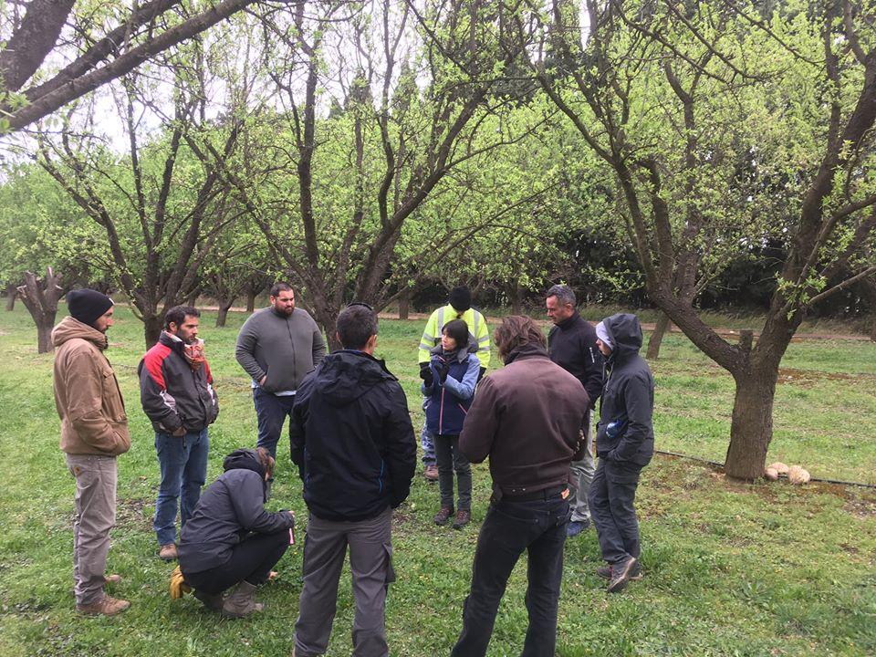 Formation Arboriculture avec les stagiaires REA 2020